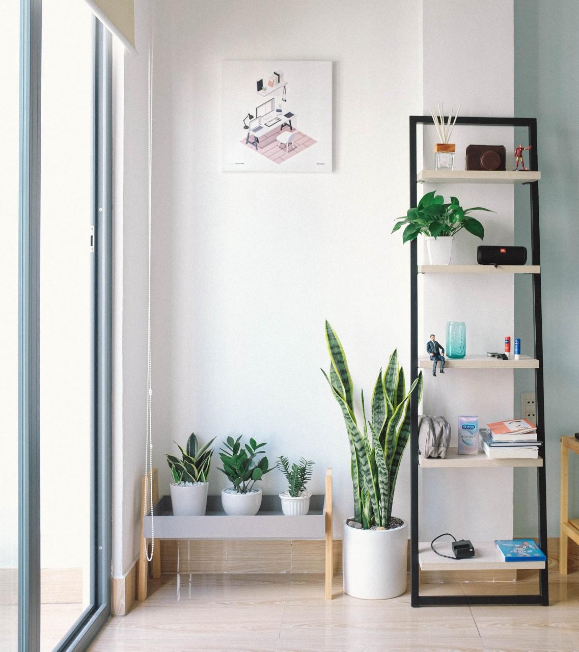 shelves with desk organized home