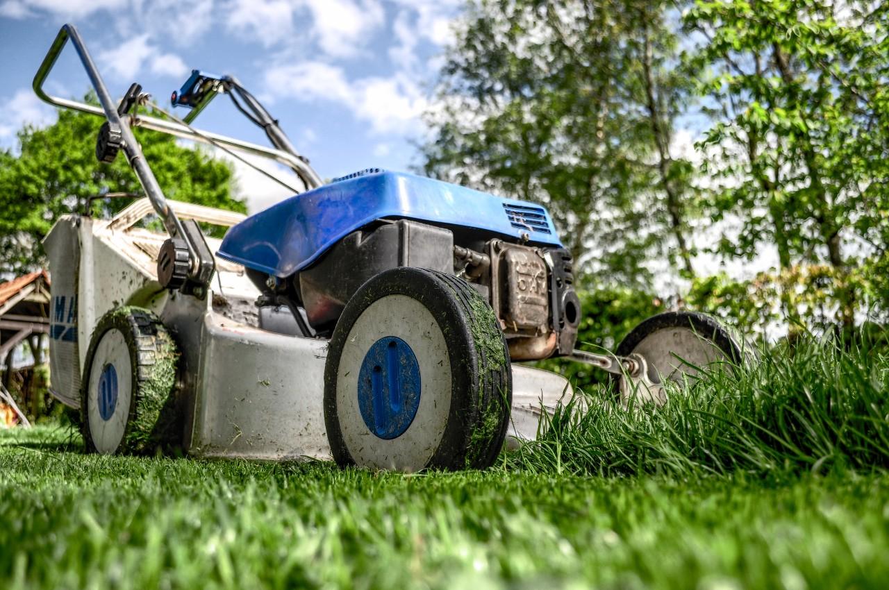 tend your garden to organize your home