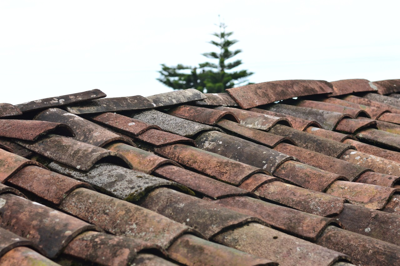 roof repairs is a home organization tip