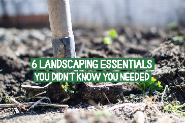 Landscaping Essentials You Didn't Know You Needed