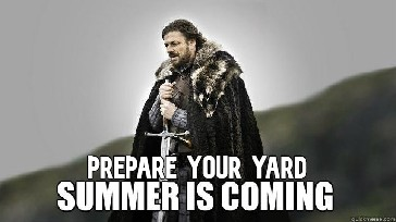 Prepare Your Yard... Summer is Coming